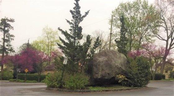 Springtime on Rockingstone Avenue