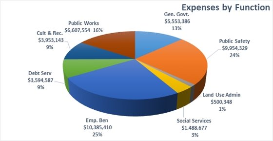 Budget Pie Chart 2020
