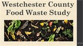 County Food Waste Study Report 2020