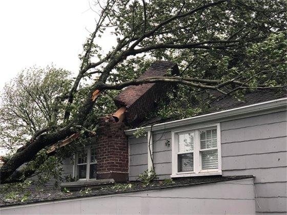 Storm Isaias Damage