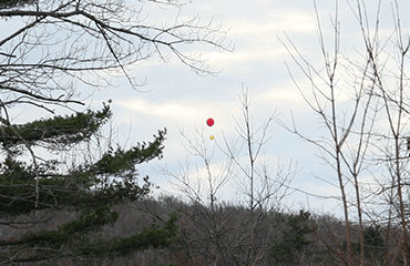 Example Balloon Test